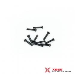 XBEE Metal bolt 3 x 12