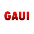 Gaui Muffler