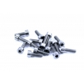 Lynx M2.5X8 Screw - 15pc (SOLD OUT)