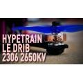 RotorRiot Hypetrain Le Drib 2306 2650KV Motor